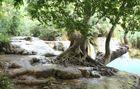 Am Wasserfall Kuang Si