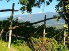 Am Weinberg, Südtirol
