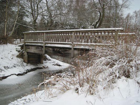 Am winterlichen Allerkanal