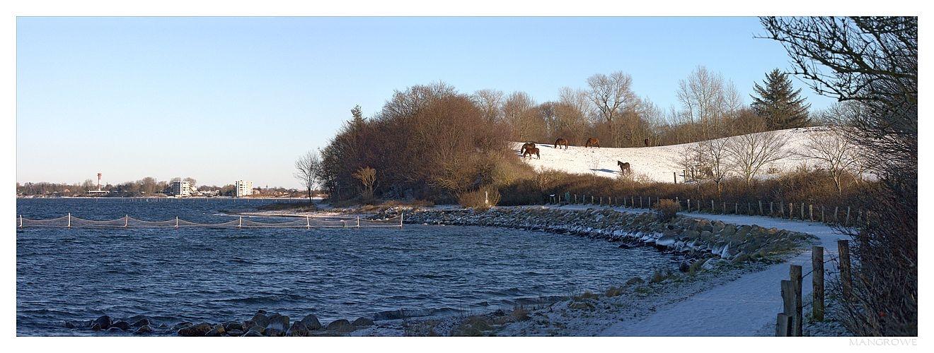 Am winterlichen Ufer