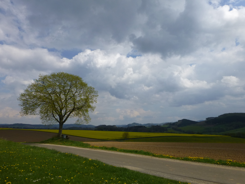 Am Ziegenberg