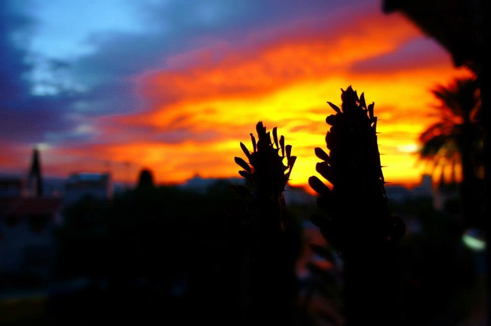 amanece en mi terraza