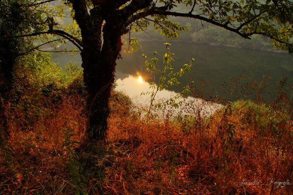 Amanecer en la Rivera del Río Miño:
