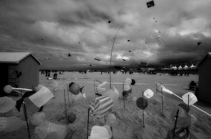 Images en noir et blanc /sepia