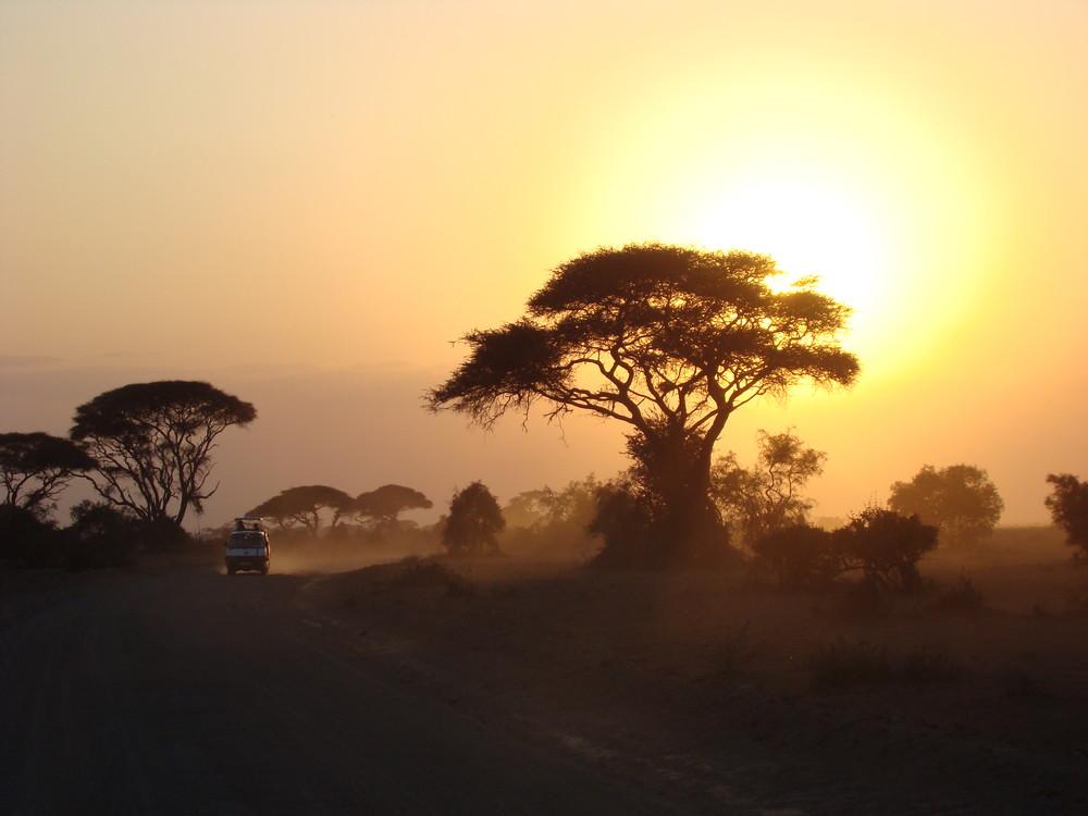 Amboseli Nationalpark Sunset