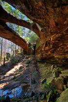 Americana: Natural Bridge