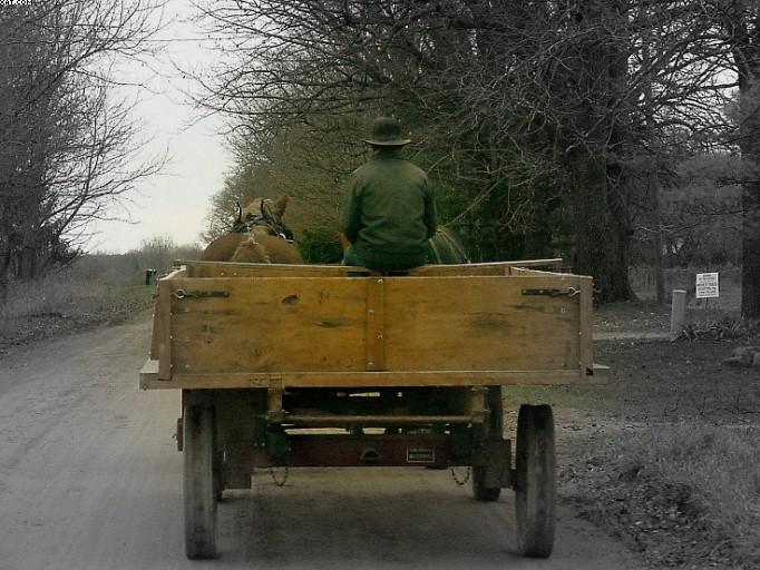 Amish in Ohio 2004