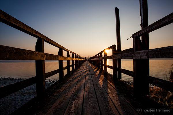 Ammersee Schilf zum Sonnenuntergang