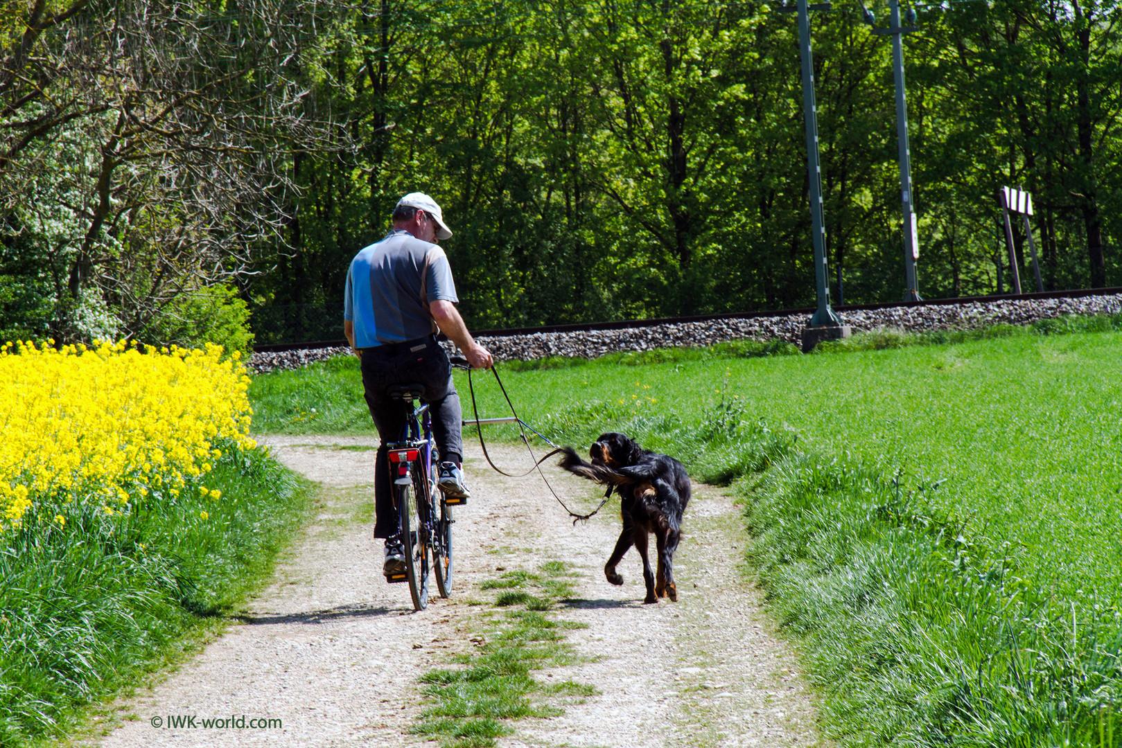 Ammon lernt Fahrrad ...