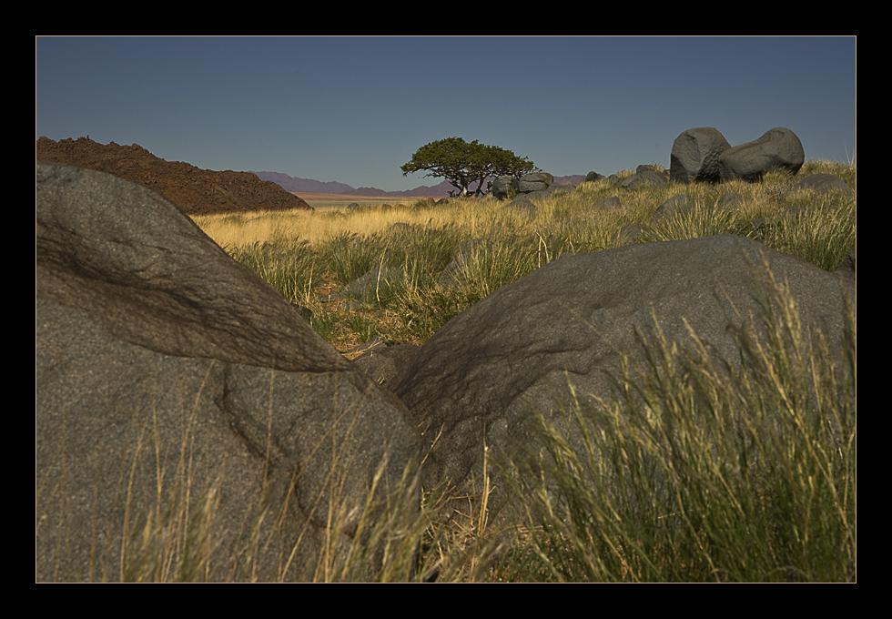 Among Stones