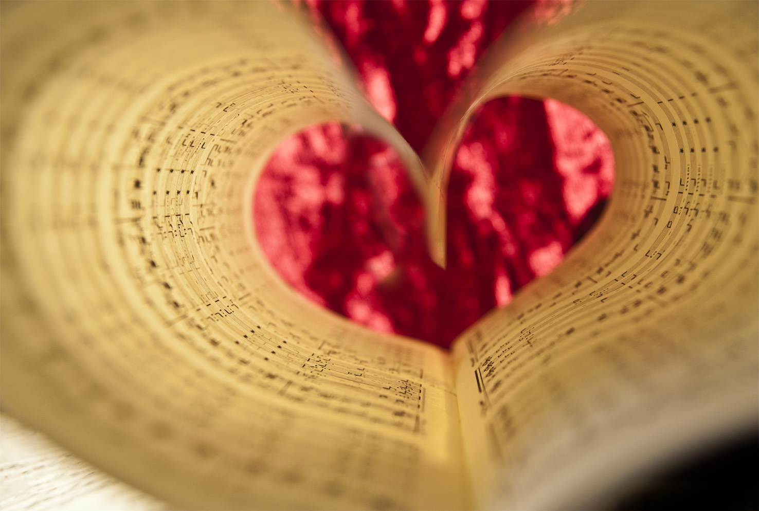 Amour de la musique sol si ré