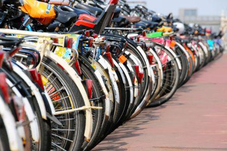 Amsterdam, royaume du cycle