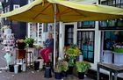 Amsterdamer Blumenladen