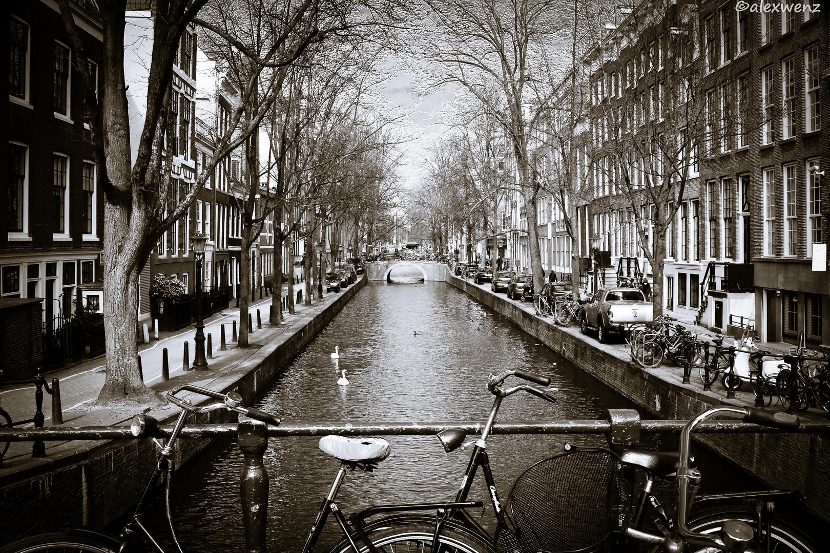 Amsterdammer Brücken 3