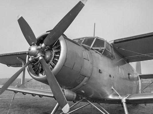 AN-2 in Lauerstellung