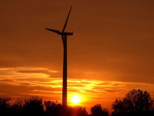 AN Bonus(Siemens) Windpark Trebbichau