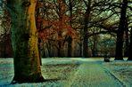 an den Bäumen entlang