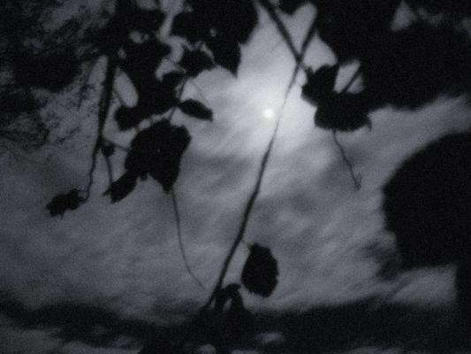 An den Mond . . .