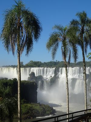 An den Wasserfälle von Iguazu im November 2013