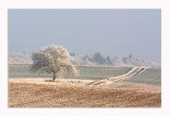 An den Winter