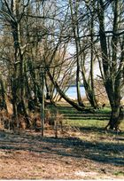 An der Elbe nach dem Hochwasser