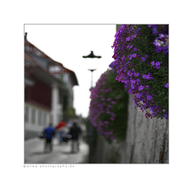 * An der Mauer *