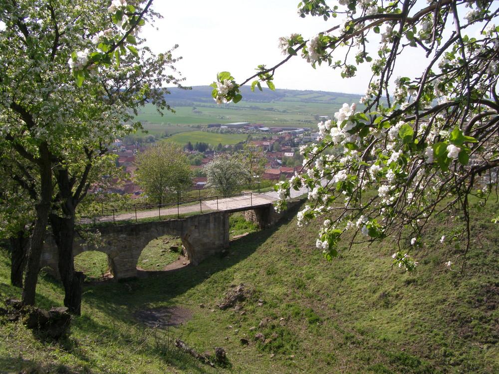 An der Mühlburg Mai 2009