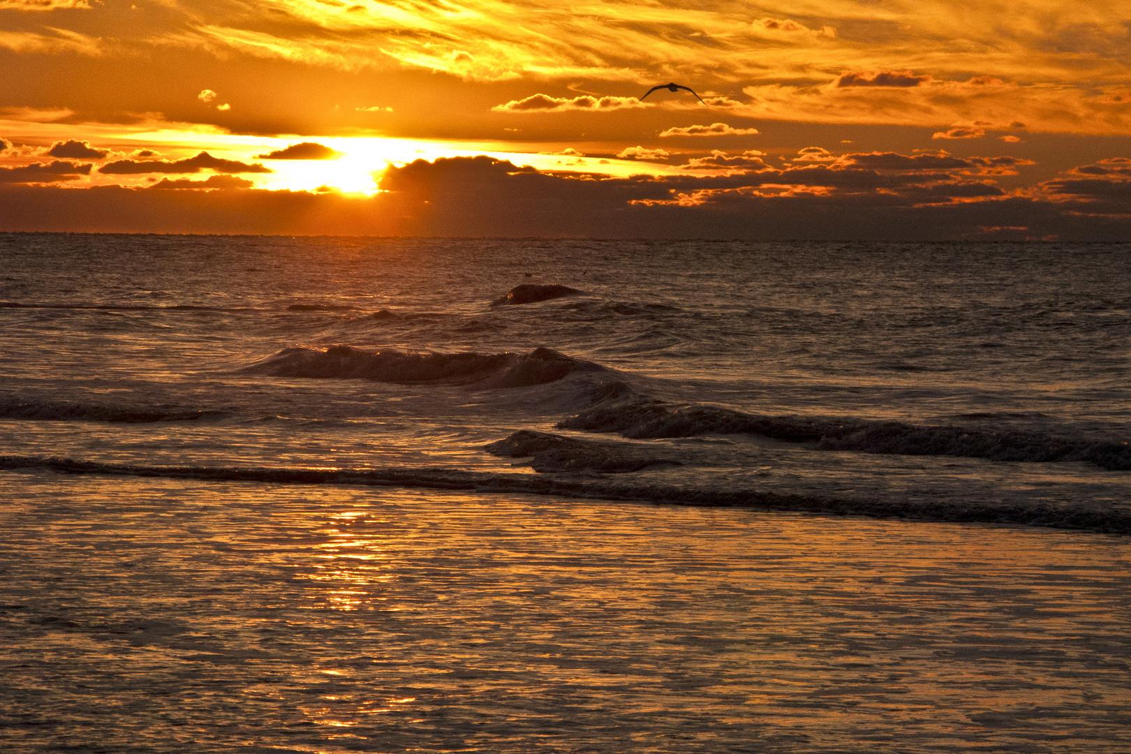 An der Nordseeküste 2
