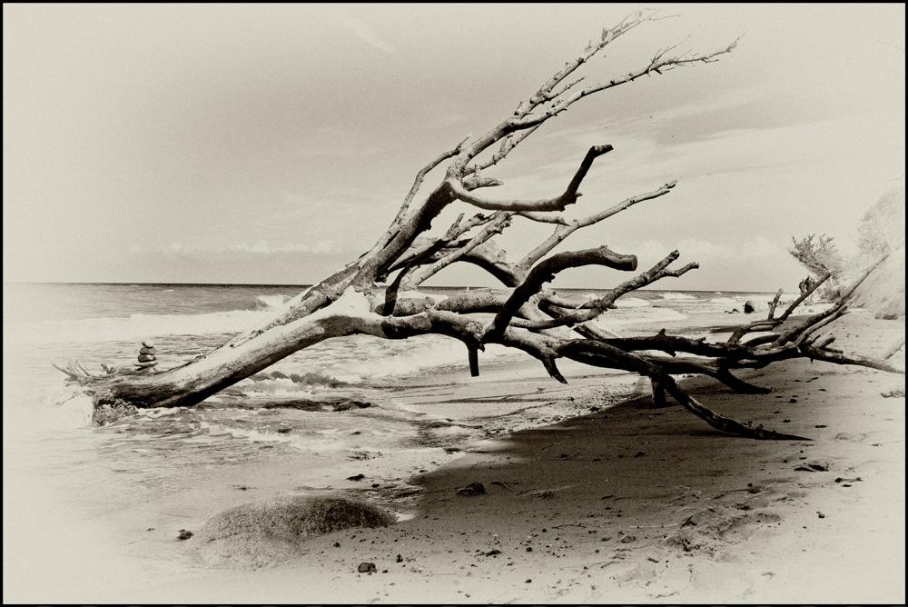 An der Ostsee 2