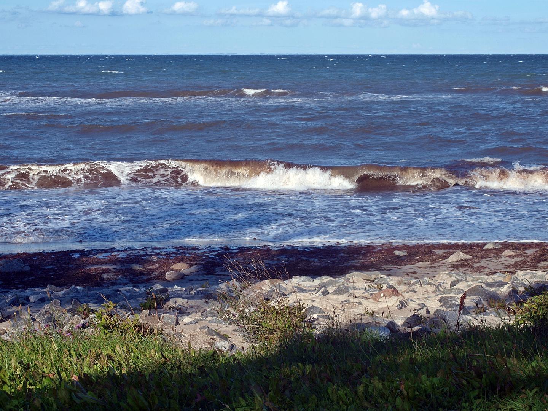 An der Ostseeküste in Maasholm