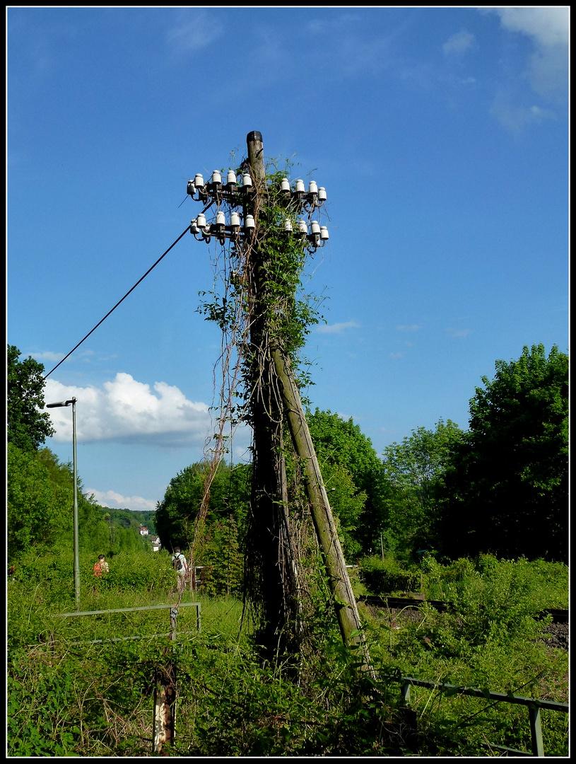 -An der Sollingbahn-