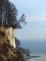 An der Steilküste Rügens
