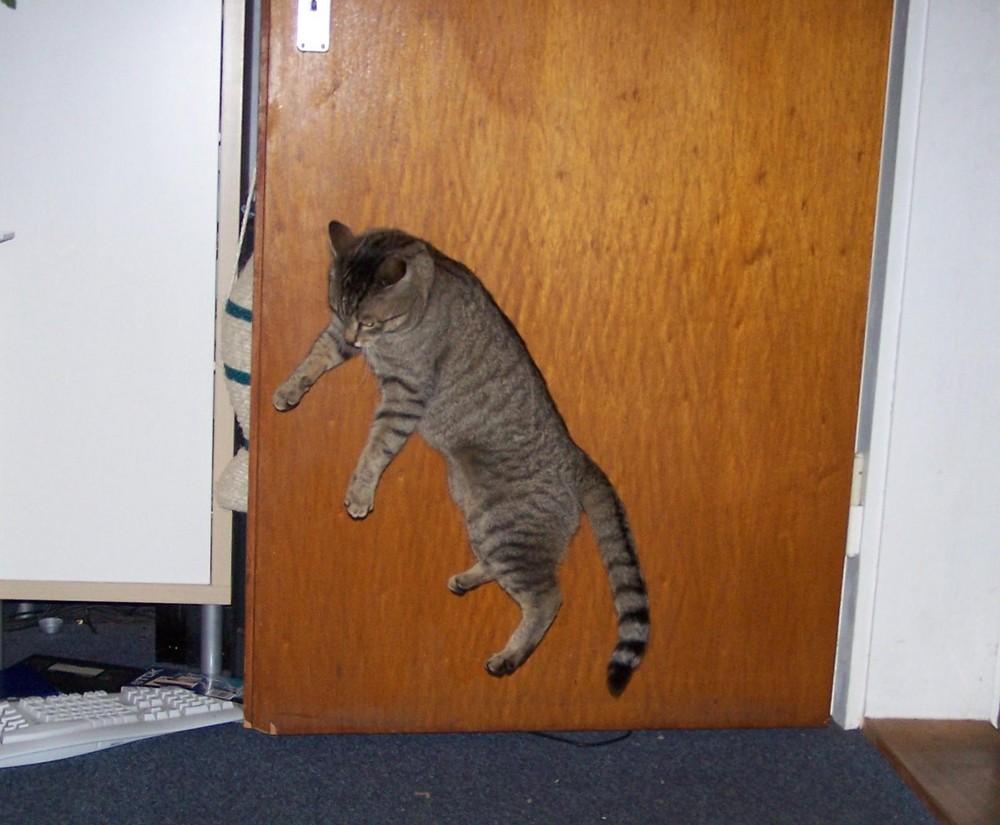 An die Tür genagelt :-)