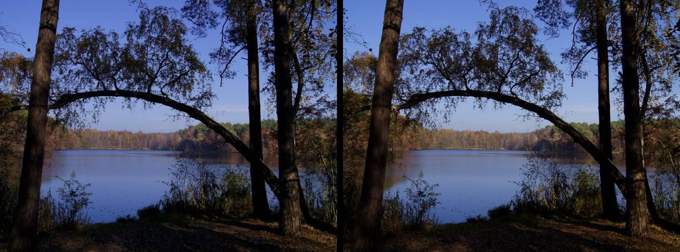 an einem der Köthener Seen (3D-II-View)