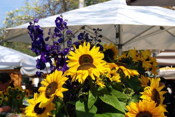 An einem sonnigen Markttag im August
