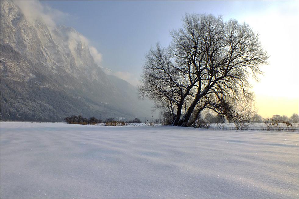 -- An einem Wintermorgen --