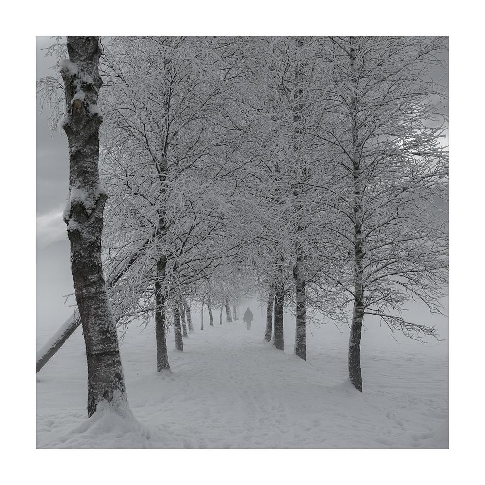 An einem Wintermorgen...
