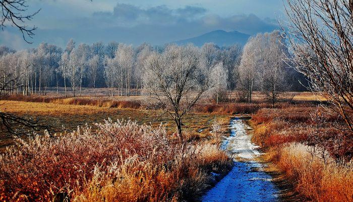 An einem Wintermorgen