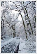 ... an einem Wintertag