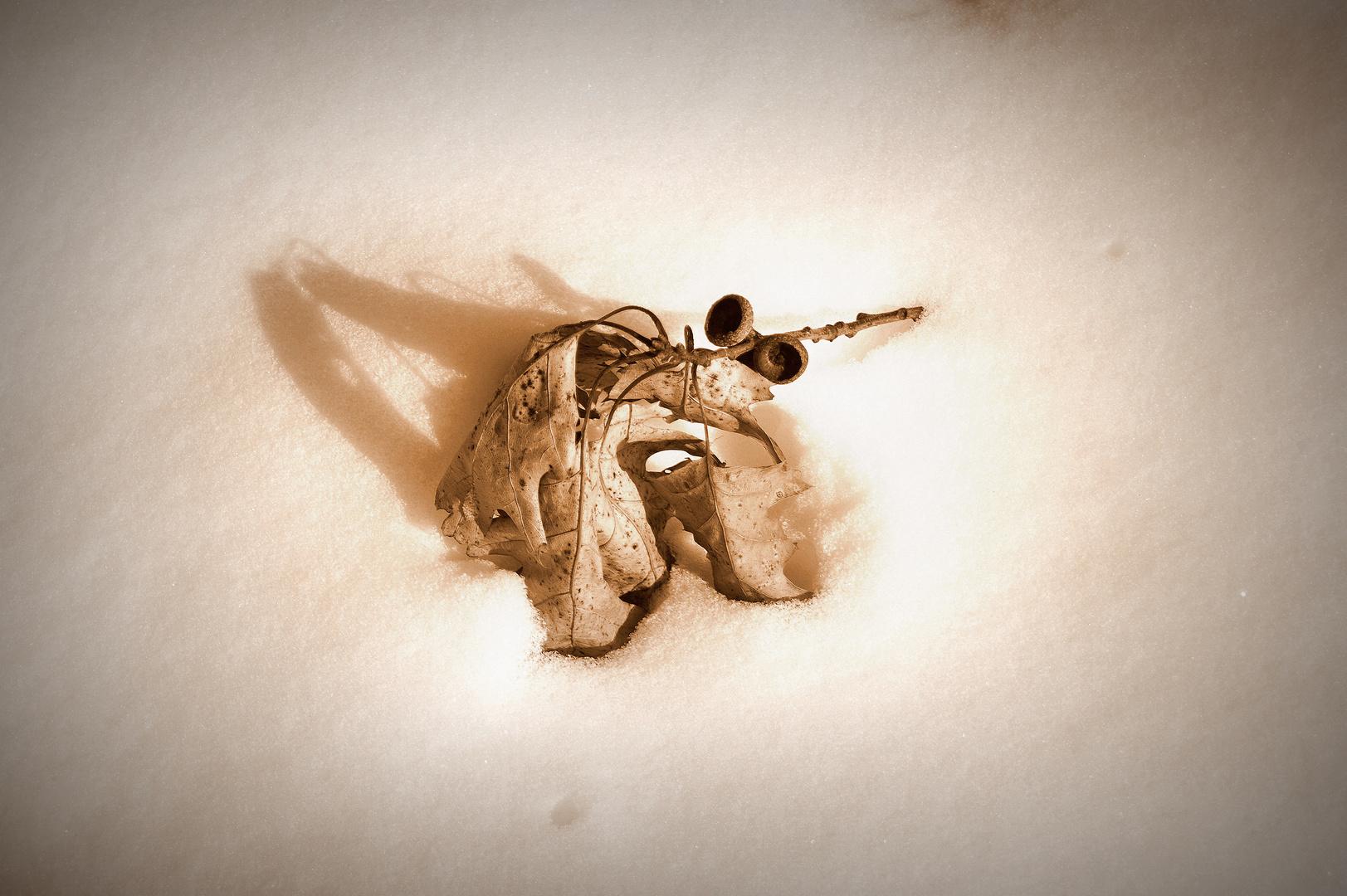 An einem Wintertag_02