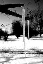 An einem Wintertag_04