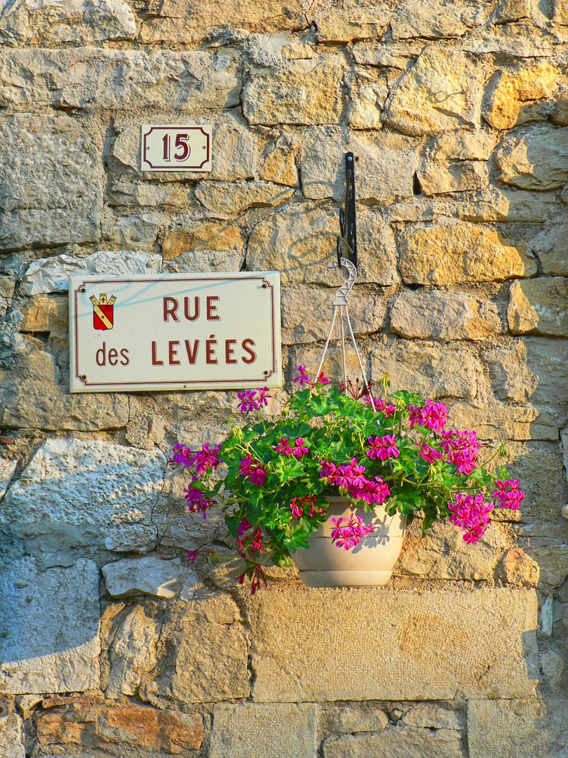 An Evening in Rue des Levees