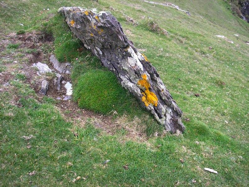 An Irish stone