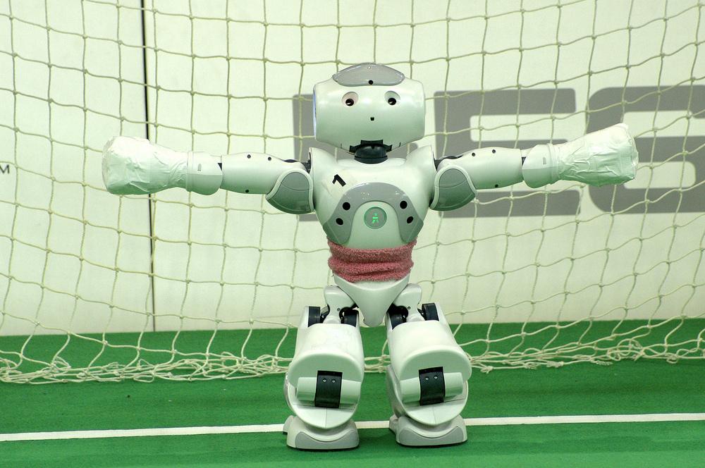 An mir kommt keiner vorbei - ich bin ein Robocup Torhüter!