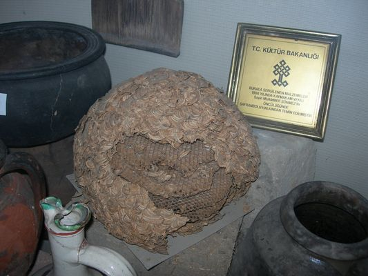 an old honey comb