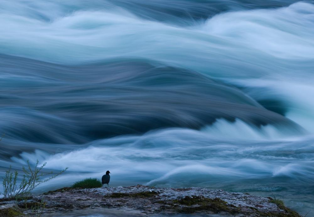 An wilden Wassern