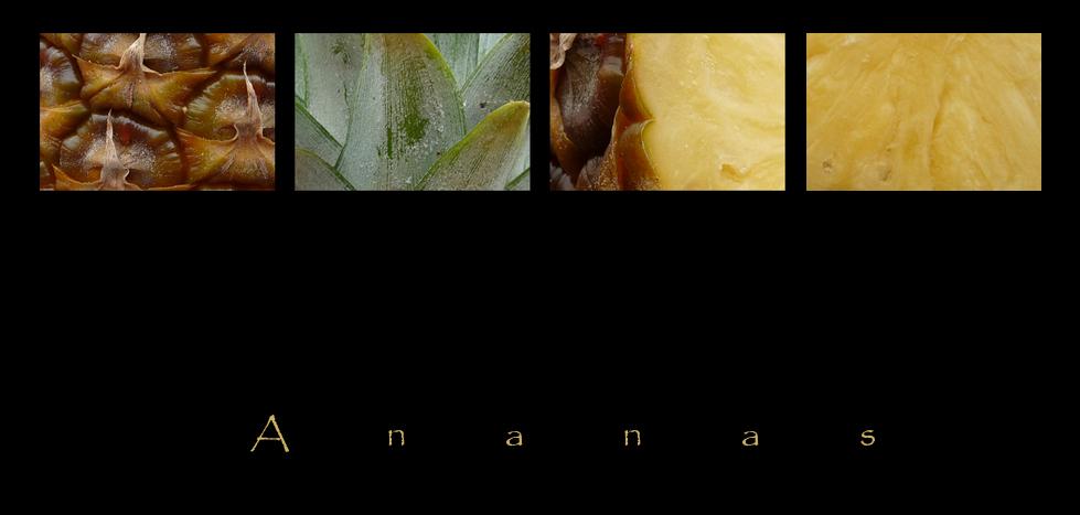 . ananas .