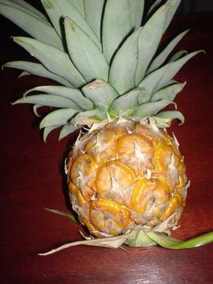 Ananas reif