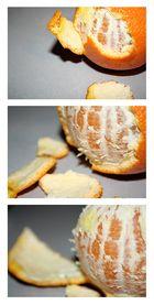 Anatomie einer Orange I