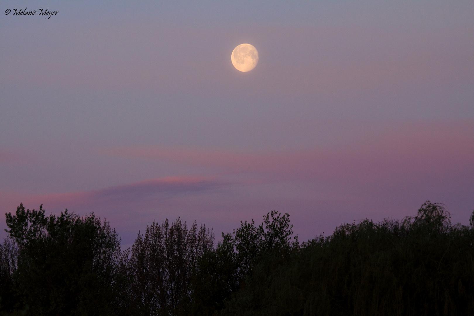 Anbrechender Tag mit Mond